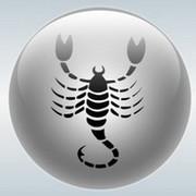Скорпион group on My World