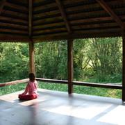Медитативный лагерь в подмосковье group on My World