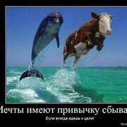 Ертулеу Нурпеисов on My World.
